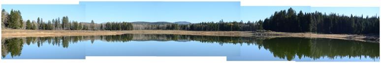pond treeline compsm