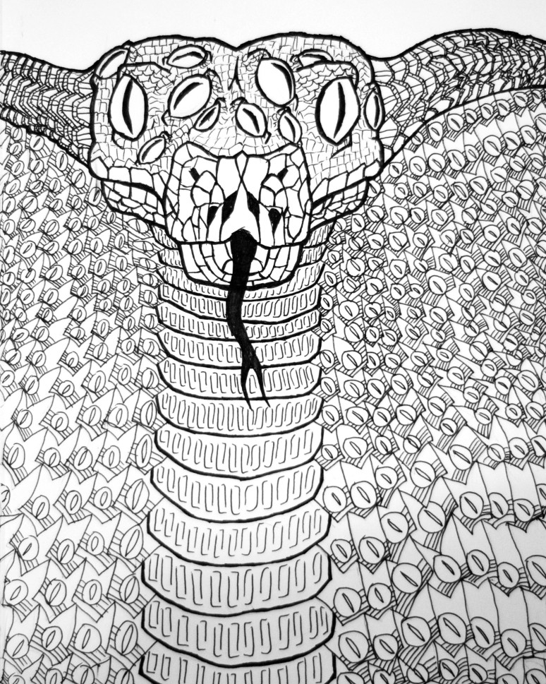snake drawing