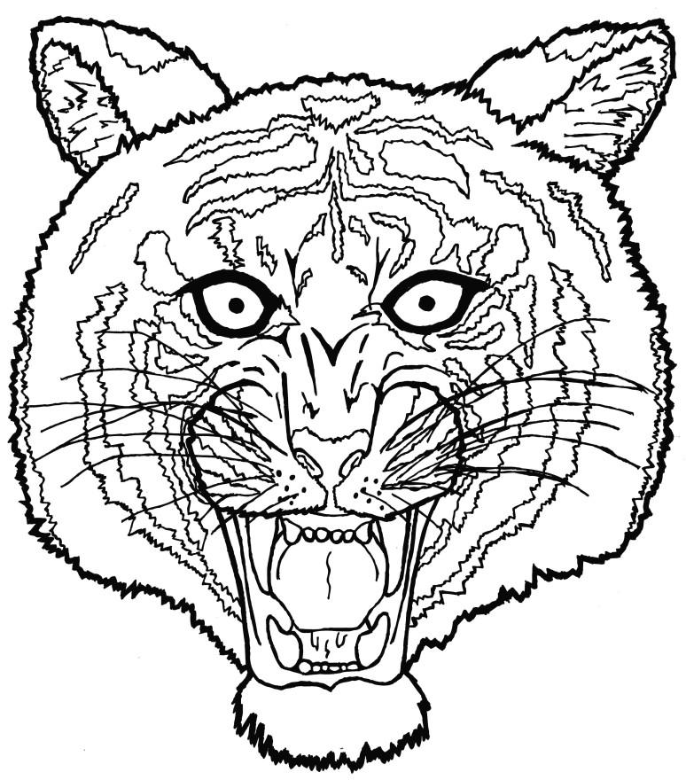 tiger facelines